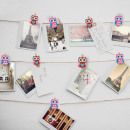 Tweezers Set - owl 6 pcs / pack
