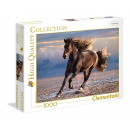 1000 pieces jigsaw wild horse