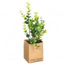 hurtownia Ogrod & Majsterkowanie: kwiaty doniczkowe z kwiatów compo, 4- do razy mies