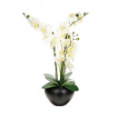Orchid composition ceramic vase h63, black