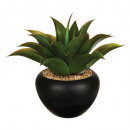 aloe vera ceramic pot h37, green