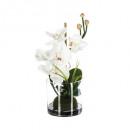 compo orchidee vaas vr h37, 2 maal geassorteerd ,