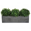 wholesale Garden & DIY store: center table ball boxwood x3, gray