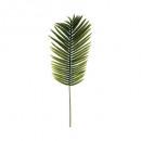 tige palmier h113, vert