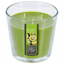 scented candle glass kiwi nina 500g, green