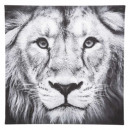 wholesale Wall Tattoos: Canvas Printed 28x28 Display , 6- times assorted ,