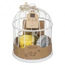 coffret cage lola citronnelle, blanc