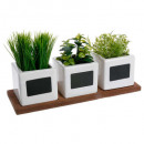 herbs ceramic pot x3, white