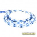 white led ribbon ch + telecde 5m, white