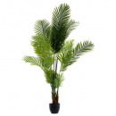 palm tree pot h170, black