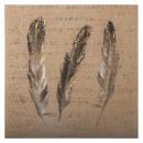 mayorista Mobiliario y accesorios oficina y comercio: paño de plumas de pei / yute 58x58x2,5, ...