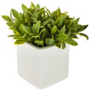 artificial plant pot ceramic h17, 3- times assorte