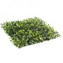 groothandel Tuin & Doe het zelf:buxus buxus 25x25, groen