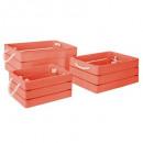 Kiste Kiste Traumkoralle x3, pink
