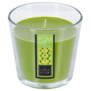 scented candle vr apple nina 250g, green
