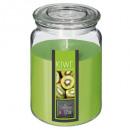 bougie parfumées verre kiwi nina 510g, vert