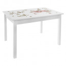 wholesale Children's Furniture: mdf 55 x 77 table print girl, multicolored