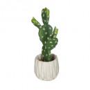 cactus cim origam h. 25.5, blanco