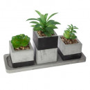 green plant tray cim h.17, gray