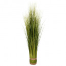 bundel van gras d12xh100, groen