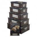 Box Metallecken x6 Cocooning, 2- fach sortiert , c