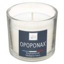 geurkaars opoponax elea 100g, wit