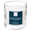 scented candle opoponax elea 470g, white