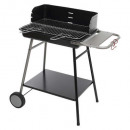 bbq coal neka blue steel 55