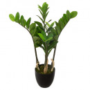 wholesale Decoration:zamioculcas h60, green