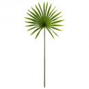 sun palm shank h68, green