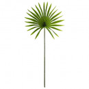 tige palmier soleil h68, vert
