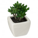 succulent ceramic pot d5, 4- times assorted , sink