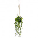 wholesale Lampes: suspension cim living h10,5, green