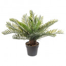 wholesale Garden & DIY store: pineapple plant h30, green
