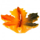 candle leaf erable 86g, multicolored