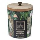 bougie parfumées verre bois nature 270g, 2-fois as