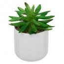 groothandel Tuin & Doe het zelf: keramiek plant glans d12,5xh18, 4 maal geassorteer