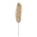 palm staaf foug goud h95, 2- maal geassorteerd , g