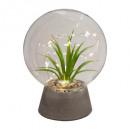 plantkogelglas led d15xh19, transparant