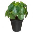 wholesale Garden & DIY store: pot terra pot h23, 2- times assorted , asso colors