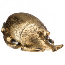 gold colonial resin scarab gm, gold