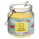 Vela perfumada Citr Glass + mango 75g, culo 4 vece