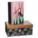 pop paper box x2, 2- times assorted , multicolored