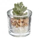 zware glazen plant, 3- maal geassorteerd doorzicht
