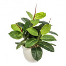 green plant pot ceramic h47, white