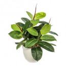 mayorista Jardin y Bricolage: maceta verde cerámica h47, blanco