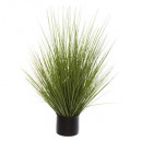 bunch grass pot plast h74, green