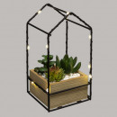 box plant house led h19, 3- times assorted , multi
