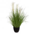 bunch grass pot plast h70, green