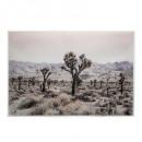 lienzo impreso / cad desert 60x90, multicolor